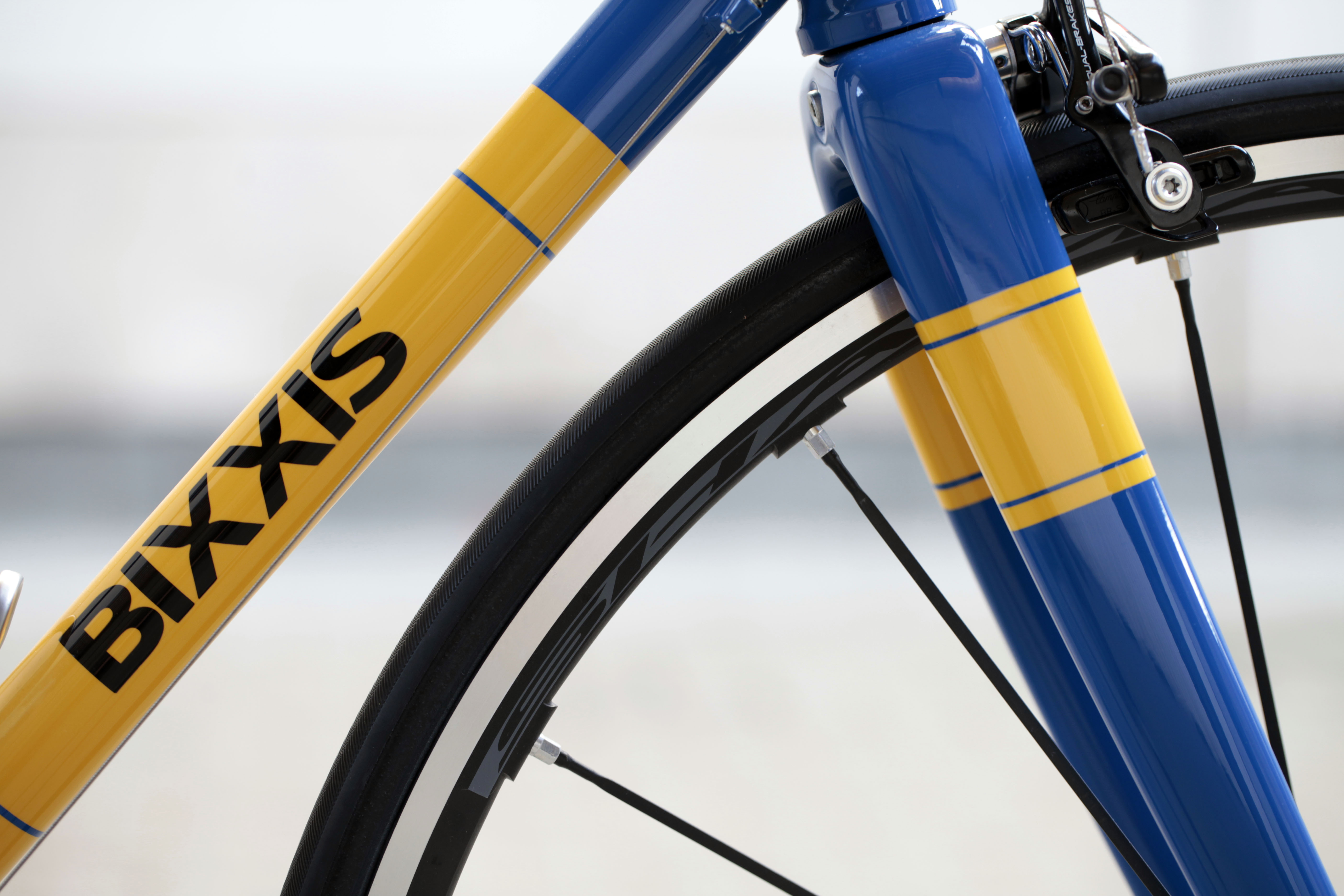 Bixxis Prima, steel frame bicycle